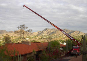 Crane Safely Removing a Tree in Paradise Valley Picture 1