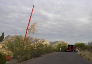 Crane Safely Removing a Tree in Paradise Valley Picture 3